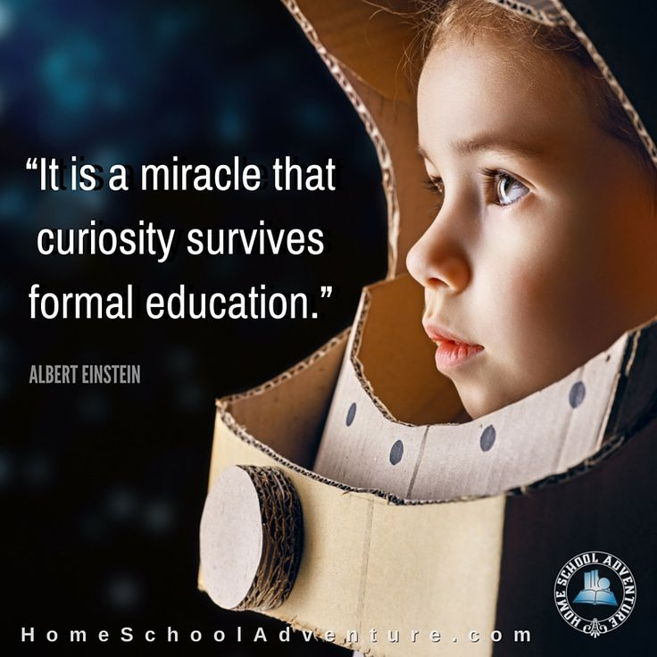 """""""It is a miracle that curiosity survives formal education.""""—Albert Einstein"""