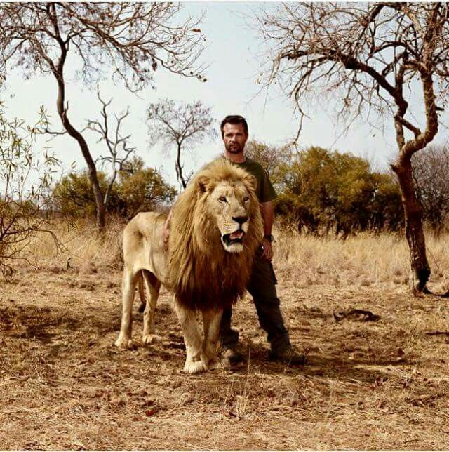 Kevin Richardson (the Lion-Whisperer) and one of his lions.