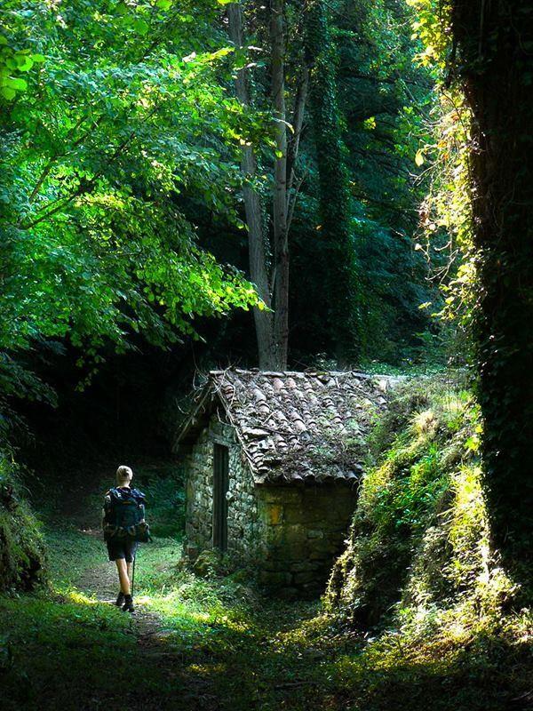 On the North Camino de Santiago. Journey of wonder and dreams.