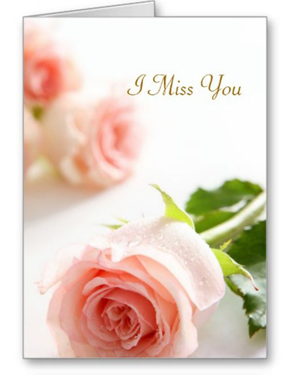 17 Best images about Family Cards on Pinterest | Greeting card template, Yellow roses and Cute bears
