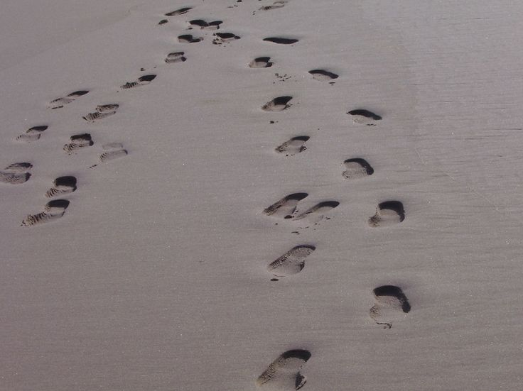 Has Footprints in the Sand changed your life? Share your experience and you may be published!