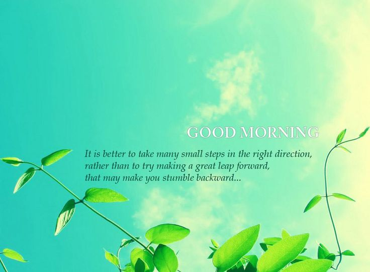 It is better to take many small steps in the right direction   rather than to try making a great leap forward   that may make you stumble backward   Good morning