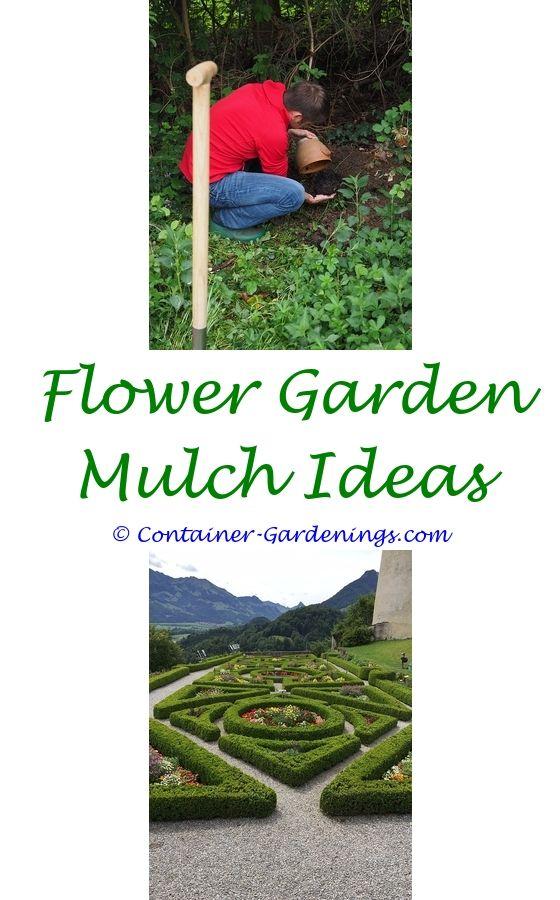 Gargen Cheap Garden Edging Ideas   New England Gardening Tips.Gargen Rose Garden  Ideas Pinterest Top Mailbox Garden Ideas And Tips No Maintenance Garden ...