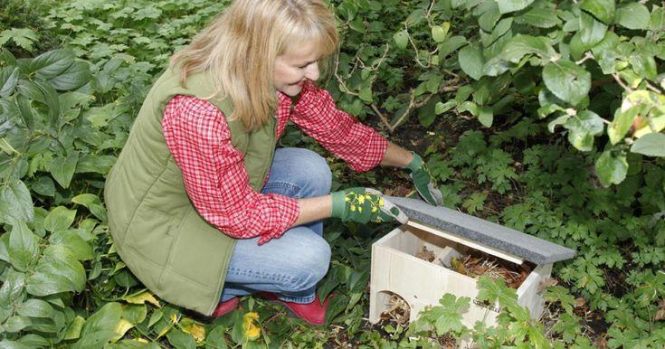 Igel überwintern meist unter Laub- oder Reisighaufen, die in kleinen Gärten oft fehlen. Doch für ein Igelhaus ist immer genug Platz. Dieser Bausatz lässt sich leicht zusammenbauen.