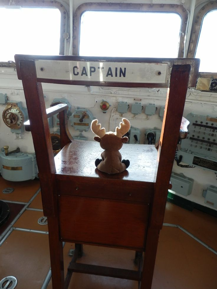 Mr. Moose on HMS Belfast - settling in the captain's chair.