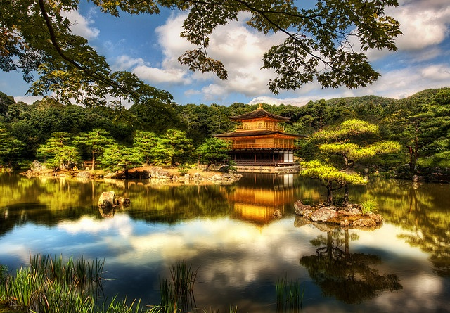 The Golden Pavilion, Kyoto, Japan.  This is one of the most famous temples in Kyoto, so of course I had to go. It was originally built back in 1397 and has been destroyed and rebuilt several times. The building itself is as meticulous as the gardens around it. The Japanese really know how to tend a garden! There was a fleet of workers all over the grounds, sweeping up and rearranging little bits here and there. It was all very quaint and wonderful.