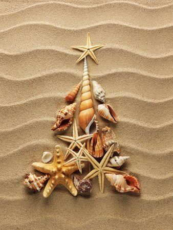 Wij wensen al onze gasten een fijne kerst en ook alvast een fijne jaarwisseling. We zien jullie graag terug in het nieuwe jaar. Wil je even bijlezen in alle blogs uit het archief dan vind je hier een handig overzicht. (Klik op plaatje)