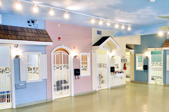 This is the cutest boarding kennel EVER.