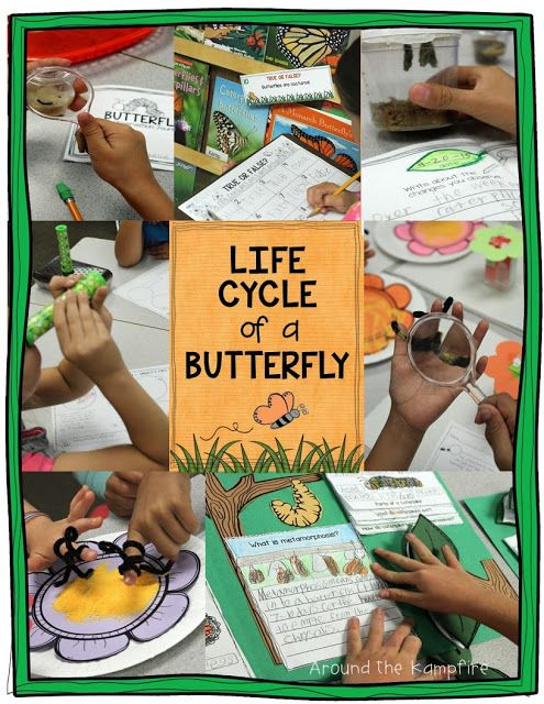Butterfly life cycle activities, ideas, and free printables.