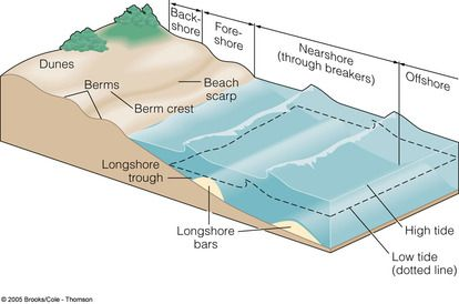the beach profile