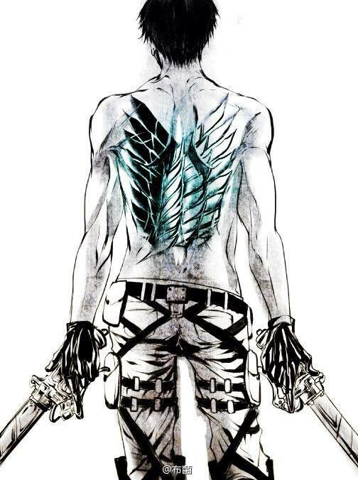 Levi  Wings Of Freedom Rivaille