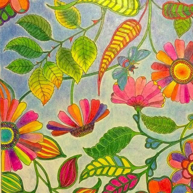 Amazon Secret Garden 20 Postcards 9781856699464 Johanna Basford BooksGarden PicturesColoring