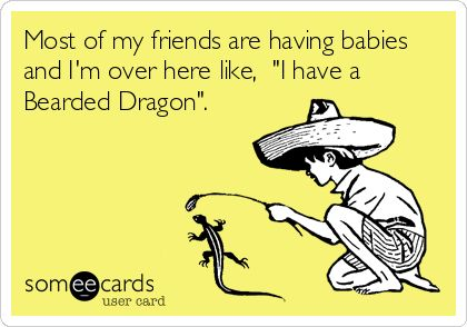 Most of my friends are having babies and I'm over here like, 'I have a Bearded Dragon'.