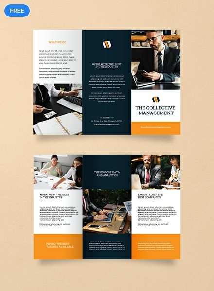 Free Blank Trifold Brochure Brochure Templates Design 2019