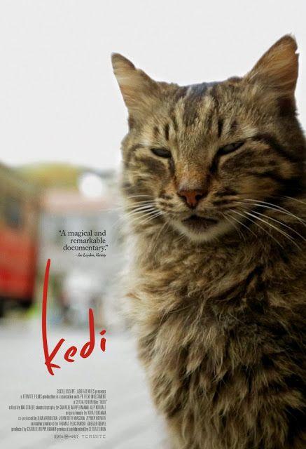 Kedi (2017) | INDOMOVIE888