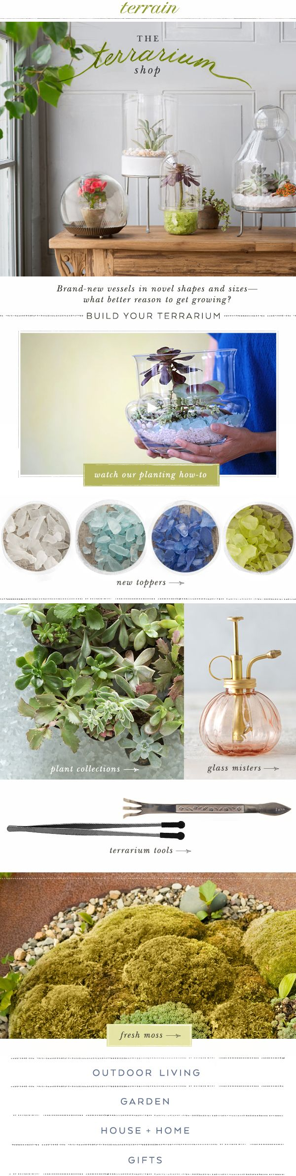 """This site looks cool! I will have to check them out, hopefully they are not too expensive COOL TIP: Target has a whole isle end racks of just stuff for terrariums! They also have realistic fake succulents for those of us without a """"green thumb'."""