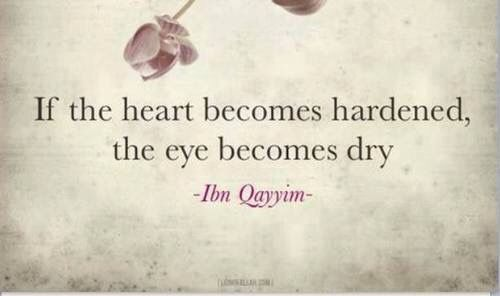 when you become numb to other people's feelings and suffering...emotionless...you can't even shed a single tear of pity if not empathy