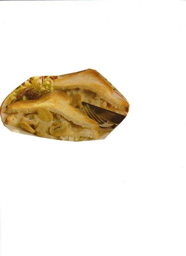 Ragoût tosti