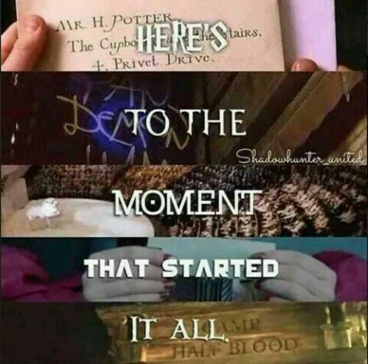 Harry Potter | The Mortal Instruments | Divergent | The Hunger Games | Percy Jackson | Fandoms