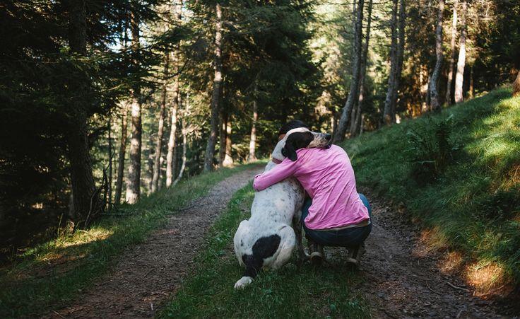 Moderne Hundeerziehung setzt auf Fairness, Motivation und gute Bindung. Aber wie erkläre ich meinem Hund plausibel, dass er in Zukunft meine Schuhe und den Sonntagsbraten in Ruhe lassen soll?