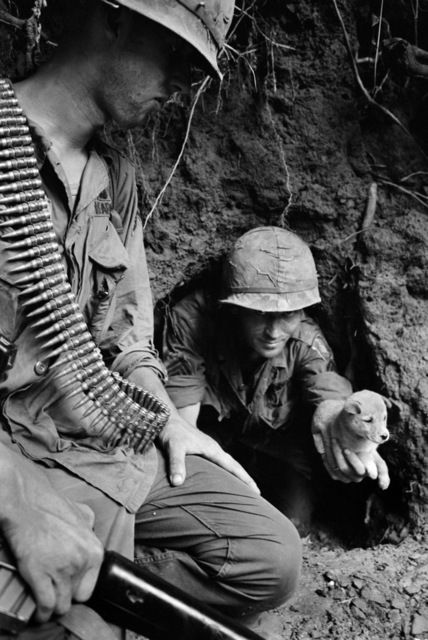 U.S. paratrooper Sgt. James R. Cone of Clarksville, Tenn., holds a puppy that nipped him as he groped about in a cave entrance on a river bank in Lam Dong Province, July 24, 1966. Troops of the 173rd Airborne Brigade were searching for Viet Cong guerrillas dug into the caves, but the men had fled, leaving only women and children, and one dog. At left is Pfc. George R. Rosen of Whitehall, Mont. / Credit: AP Photo/Henri Huet