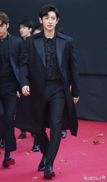 Chanyeol - 171115 2017 Asia Artist Awards, red carpet  Credit: 엑스포츠뉴스.
