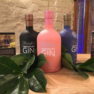 Burleighs Gin #burleighs #gin #gintonic #cocktail #blog