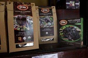 Humanely raised luwak coffee