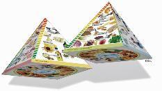 Dreidimensionale Lebensmittelpyramide (Bild: Dreidimensionale Lebensmittelpyramide; Deutsche Gesellschaft für Ernährung e. V., Bonn)