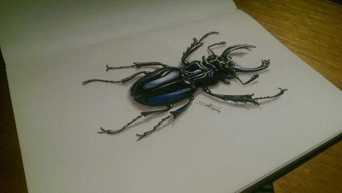 Beetle illustration by Wouter Haine www.dutch-designs.eu . Pen, ink, marker, colored fineliner and acrylics on paper.