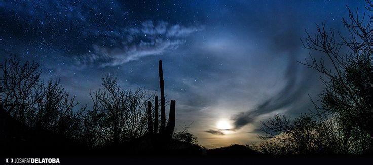 Nightly desert #josafatdelatoba #loscabos #cabophotographer  #landscapephotography #sundown #sanjosedelcabo #desert #night