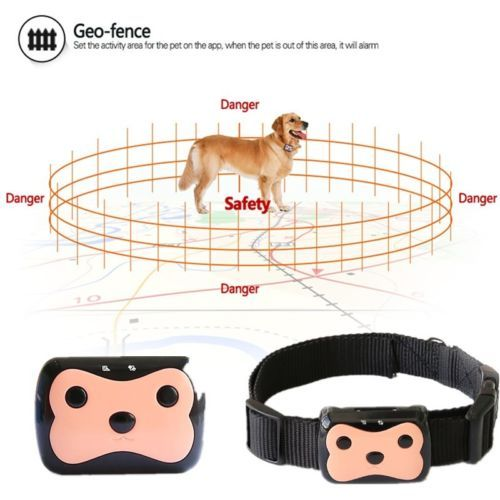 Mini-Dog-Cat-Collar-Pet-ID-Locator-Real-Time-GPS-Tracker-GSM-Tracking-Waterproof