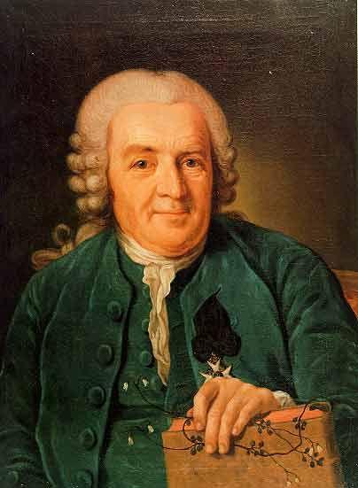 Resultado de imagem para Carl Nilsson Linnaeus