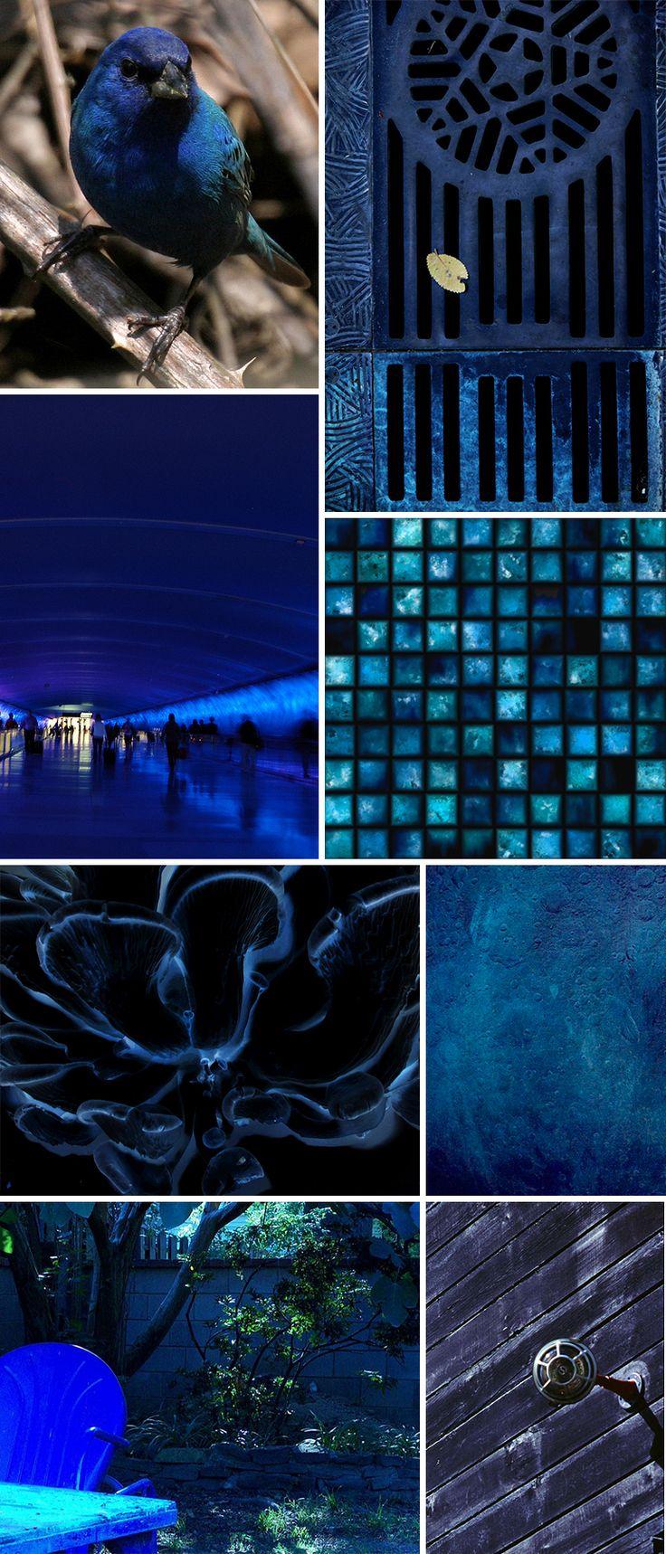 indigo from patternobserver