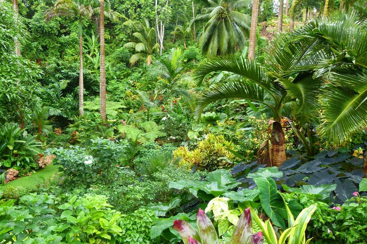 For a limited time, when you book your next trip to Barbados, you can earn up to $400 in free money to spend on-island at attractions like Hunte's Garden! http://www.visitbarbados.org/islandinclusive #BarbadosIslandInclusive