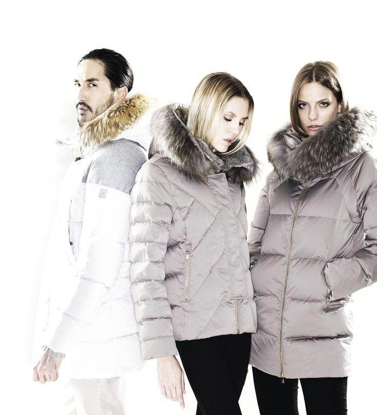 Collection - Montecore