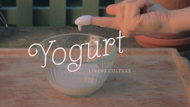 Typographie vidéo