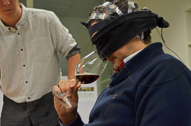 Un investigador de la Universidad Politécnica de Valencia ha comprobado que escuchar distintos palos de flamenco mientras se bebe vino de Jerez hace que cambie la percepción del sabor. El estudio ha sido realizado con sumilleres y músicos profesionales.
