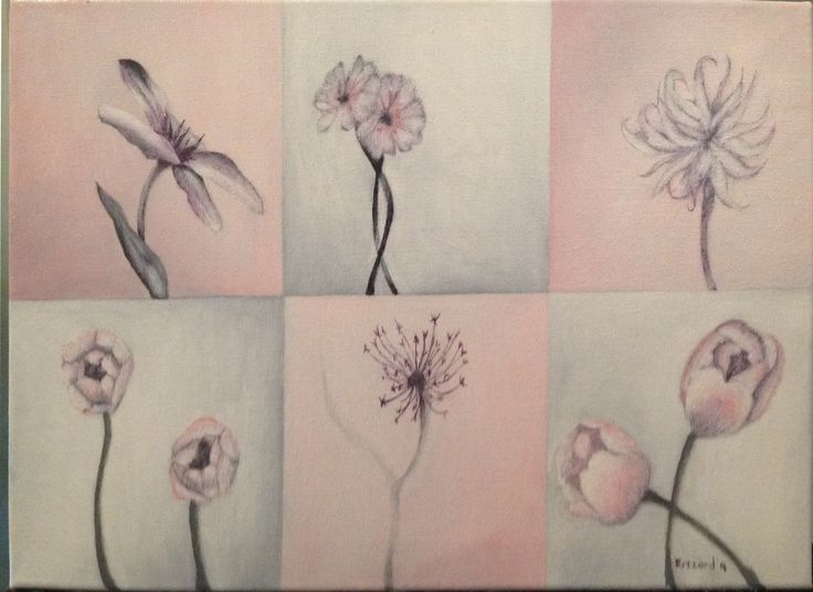 A4 oil painting.  various flowers