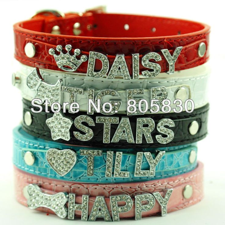 Free Shipping 5 Colors Croc PU Leather Personalized Pet Dog Cat Collars with 10MM Rhinestone Letters (Free)-in Dog Collars & Leads from Home & Garden on Aliexpress.com