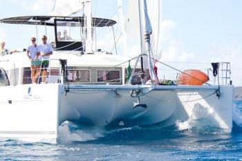 Blue Moon sailing