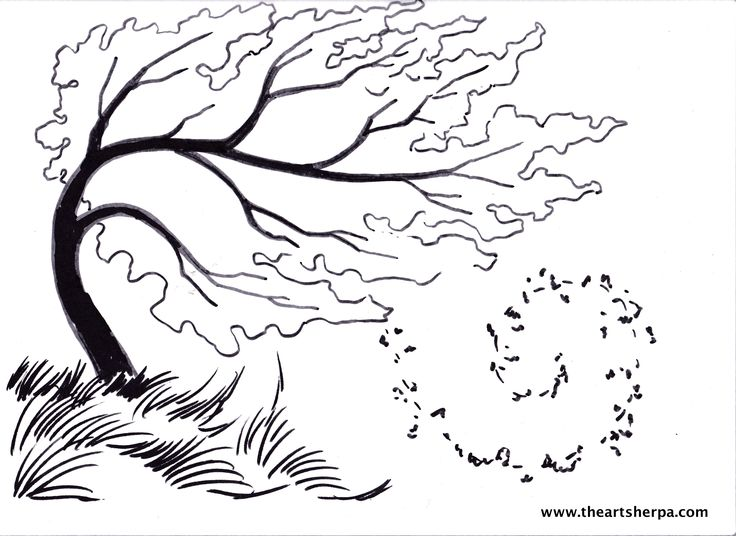 Birch tree Blowing in the wind for the Youtube Art Sherpa