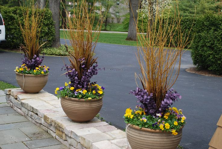 Yellow twig dogwood branches fall containers pinterest for Outdoor planter ideas