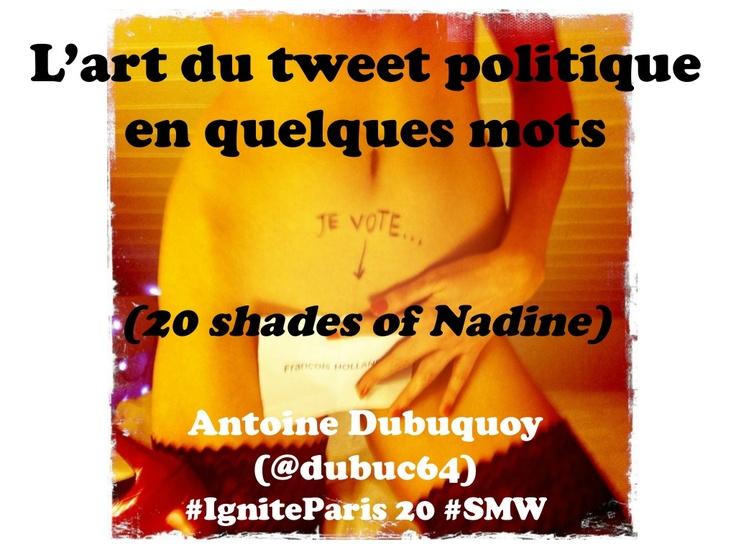 le-tweet-politique-en-quelques-mots by Antoine Dubuquoy via Slideshare
