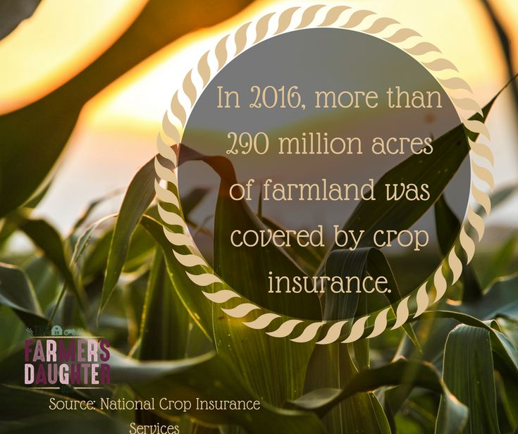 In 2016, there was more than 290 million acres of farmland enrolled in and covered by the federal crop insurance program. Crop insurance is an important tool that allows farmers to manage the many extraordinary risks of farming, including the weather.