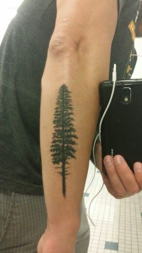 13 best images about new tattoo inspiration on pinterest for Evergreen tree tattoo