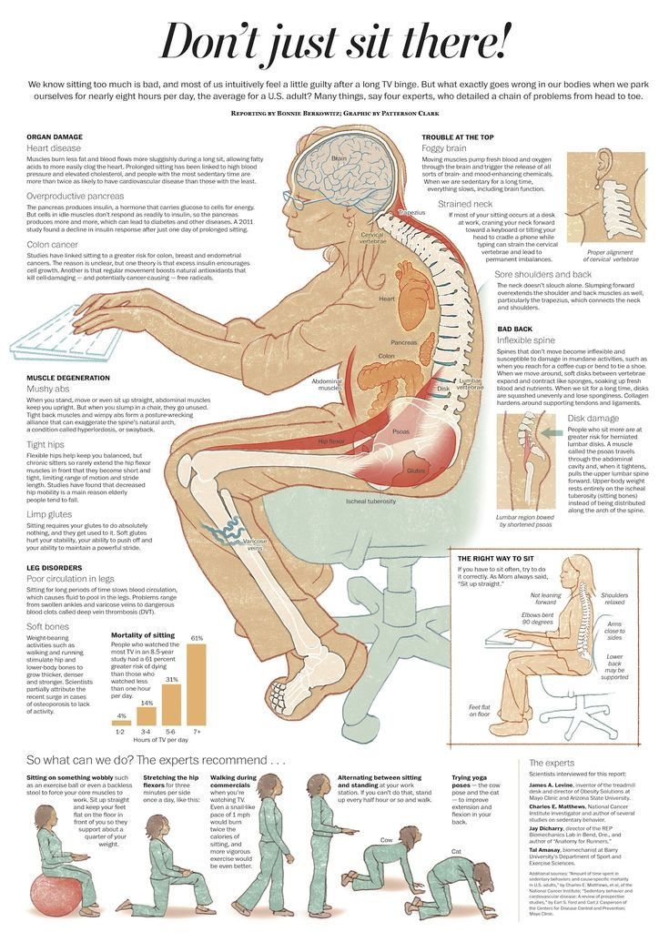 Sitting too much can damage your organs, brain, muscles, legs, and back and that's before your posture