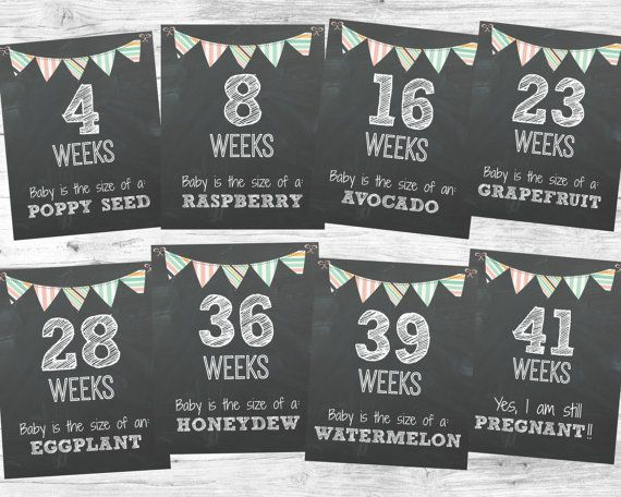 Weekly pregnancy chalkboards! Great way to document your pregnancy week by week. These cute chalkboard signs also document the current size of the baby.
