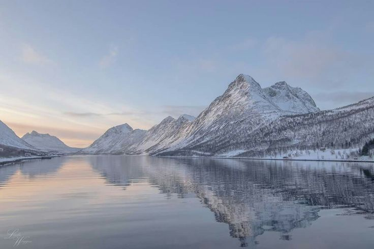 Gryllefjord,Senja/ Foto:Linda Marita Wiggen/ Fb:Troms i bilder