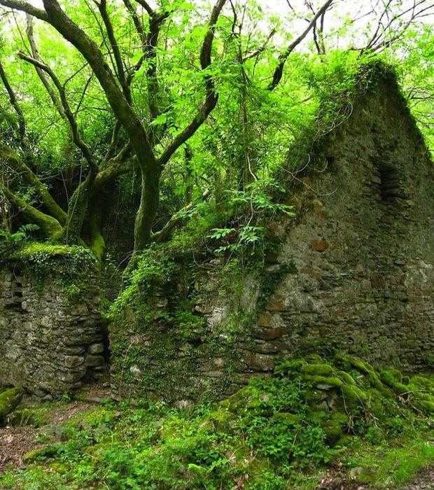 Les 25 meilleures id es concernant maisons abandonn es sur pinterest biblio - Les maisons de maylis ...